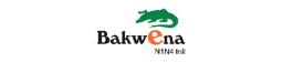Bakwena-client-big data specialists-42 company